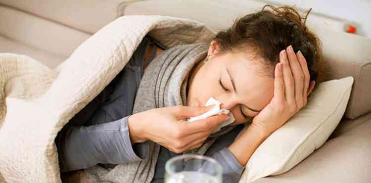 Ятрышник поможет в профилактике гриппа