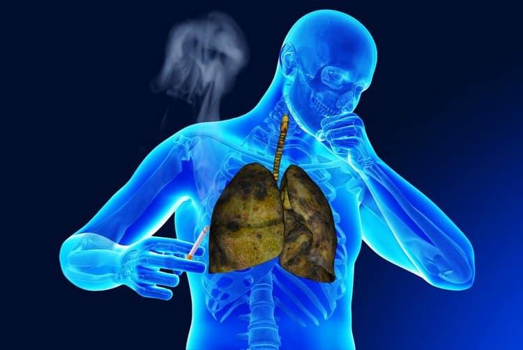 Это растение помогает бороться даже с бронхитом курильщика.