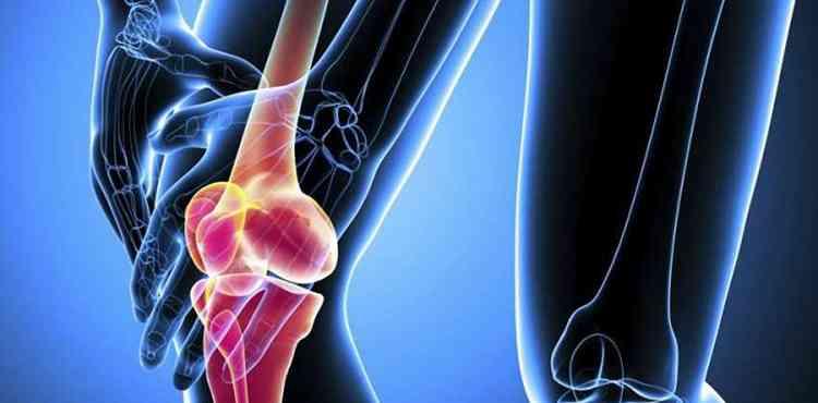 Фундук поможет при артрите