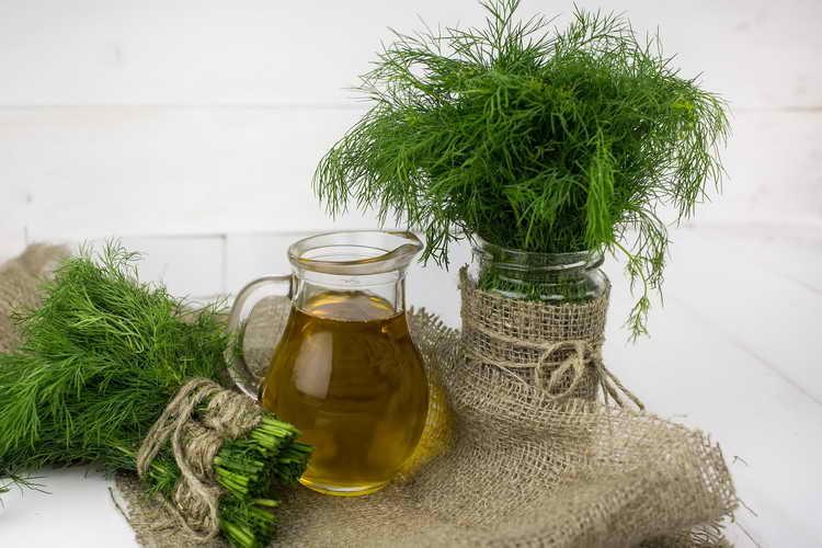 Чай из укропа и лекарственной ромашки от энуреза