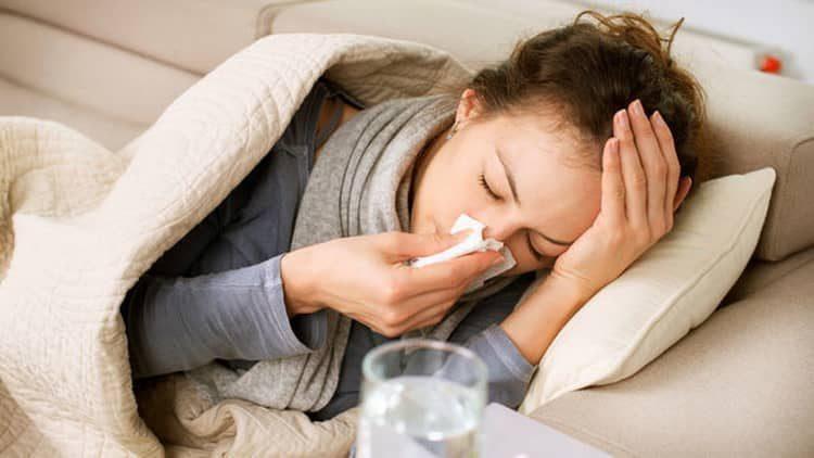 Польза растения-селезеночник при гриппе