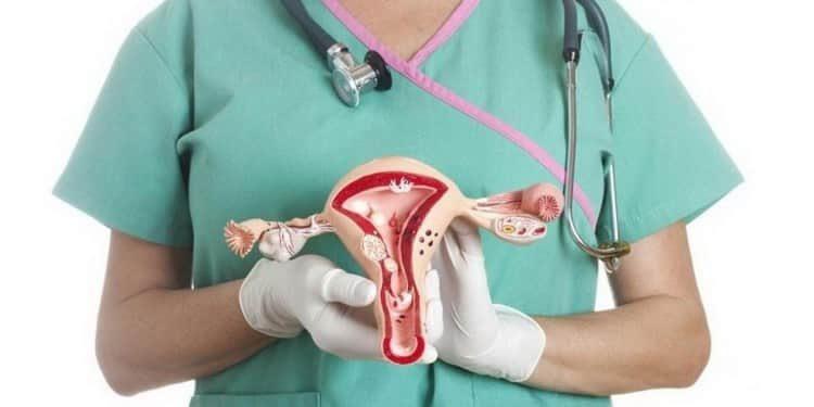Все о причинах, симптомах и лечении эрозии шейки матки народными средствами
