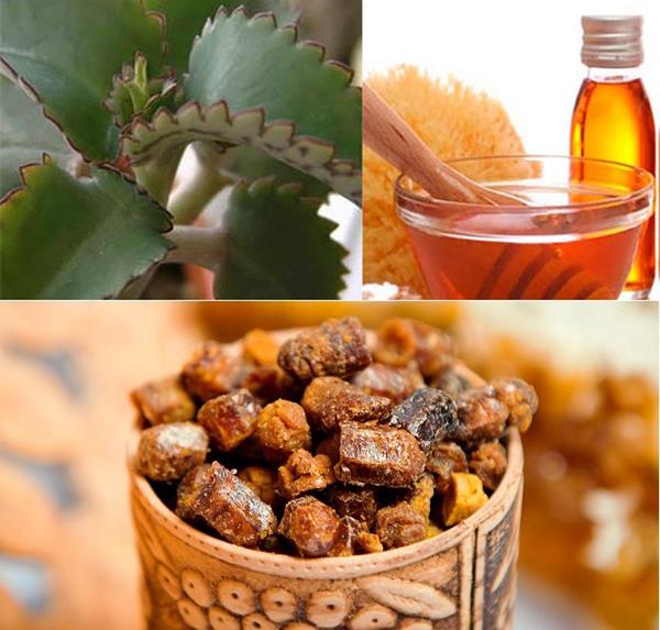 Эмульсия с прополисом,медом и каланхоэ