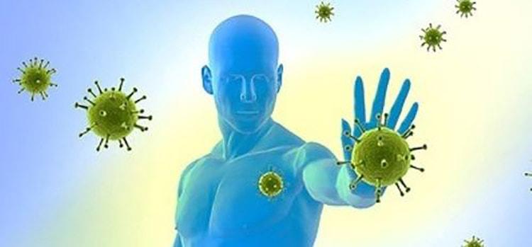 От микробов защитит орляк
