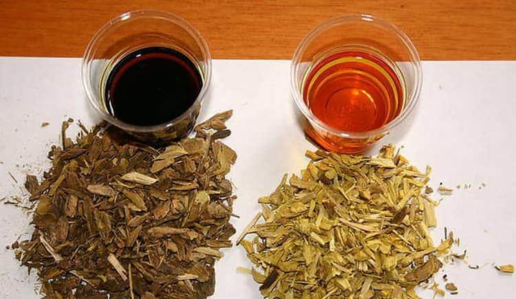 Для лечения панкреатита в домашних условиях можно использовать отвар коры барбариса.