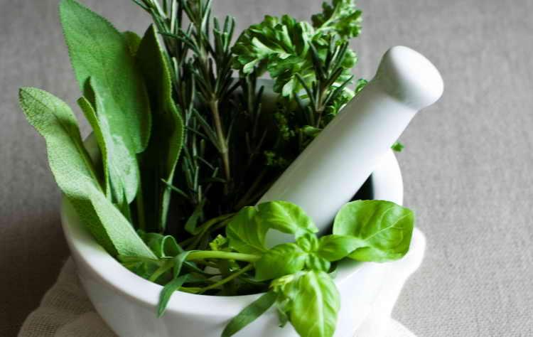 Рецепты очистительных жидкостей для детей