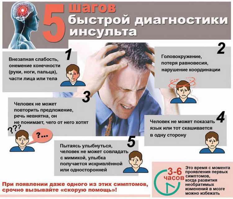 диоскорея кавказская лечебные свойства и противопоказания