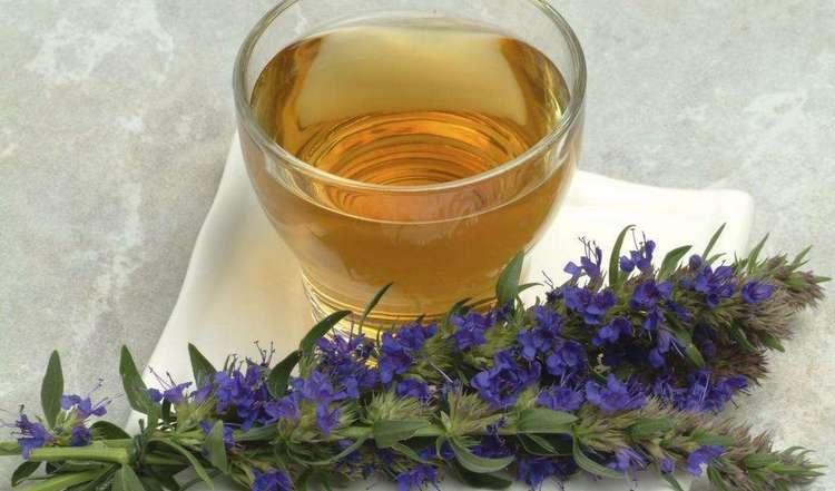 Чай на основе иссопа тоже можно пить при вздутии.