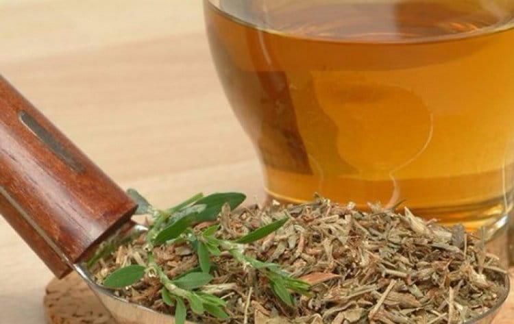 Узнайте также о полузных свойствах и противопоказаниях к применению спиртовой настойки на траве спорыша.