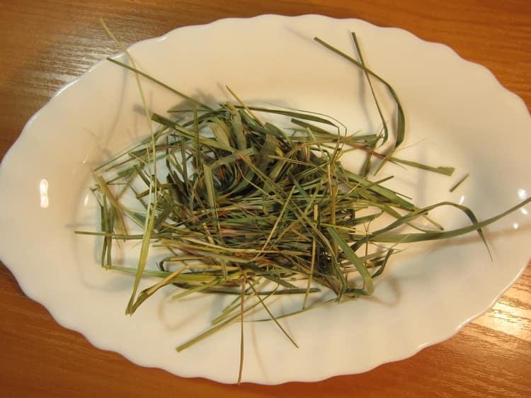 Теперь вы знаете все о лечебных свойствах травы зубровка.