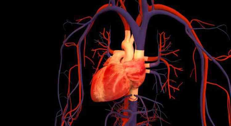 Фисташки наладят работу сердца