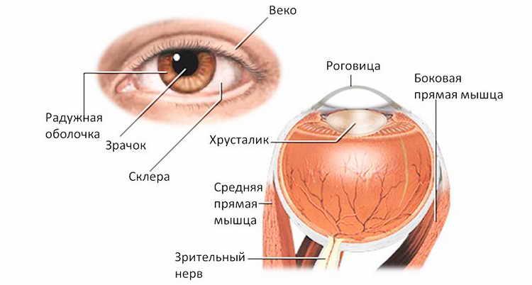 кератит симптомы и лечение