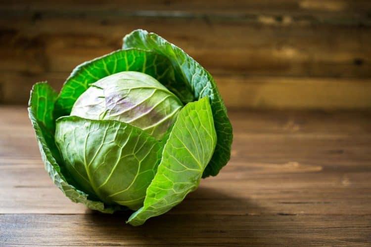 Белокочанная капуста имеет в своем составе множество витаминов, поэтому приносит огромную пользу, но все же некоторым людям может нанести и вред.