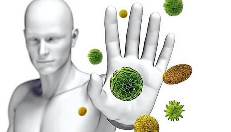 Польза растения мелисса проявляется и в его противовирусном действии, но все же при неправильном применении можно нанести организму вред.