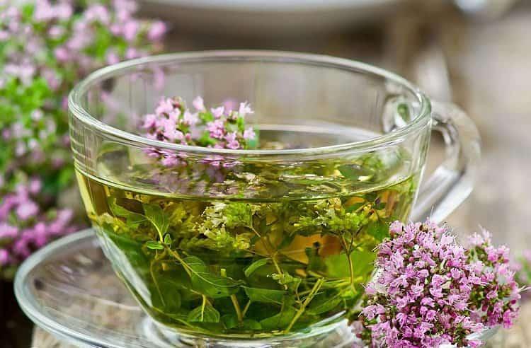 Эта трава помогает и при лечении заболеваний желчного пузыря.