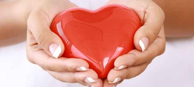 Шефердия поможет поддержать здоровье сердца