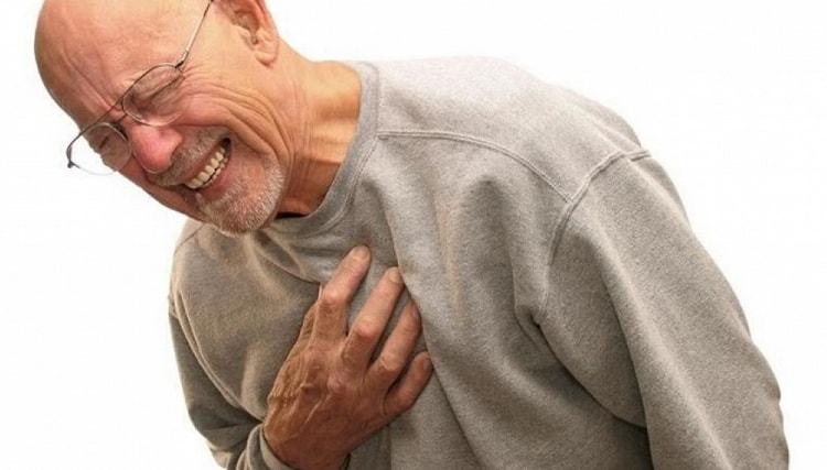 Растение используют при лечении ишемической болезни сердца.