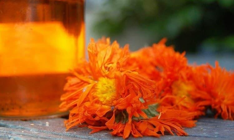 Можно лечиться и отваром цветков календулы.