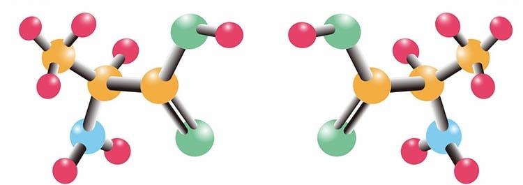 Наличие аминокислот в момордике