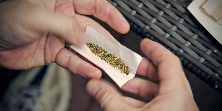 Польза курения конопли известна медикам, ведь такое средство хорошо утоляет боль.