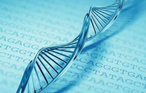 Генетическая аномалия