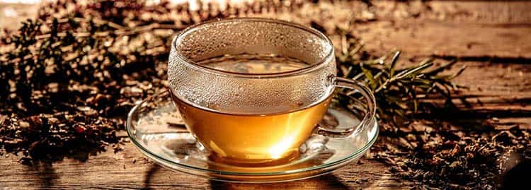 Чай из лофанта и других трав от простуды