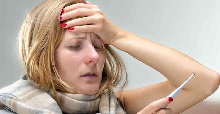 Эфедра поможет от лихорадки и жара