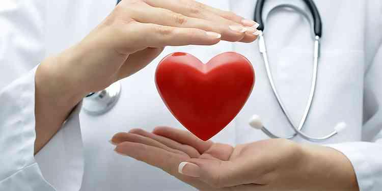 Якобиния благоприятніый эффект на сердце