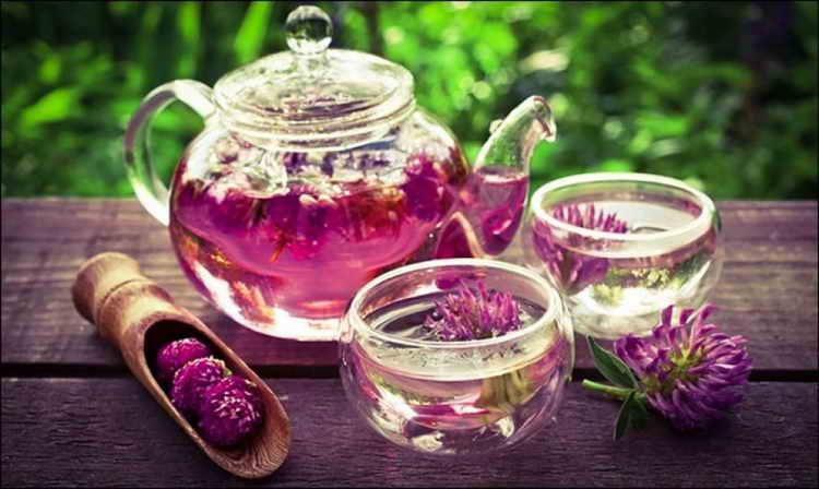 Желчегонный чай для чистки организма от токсинов
