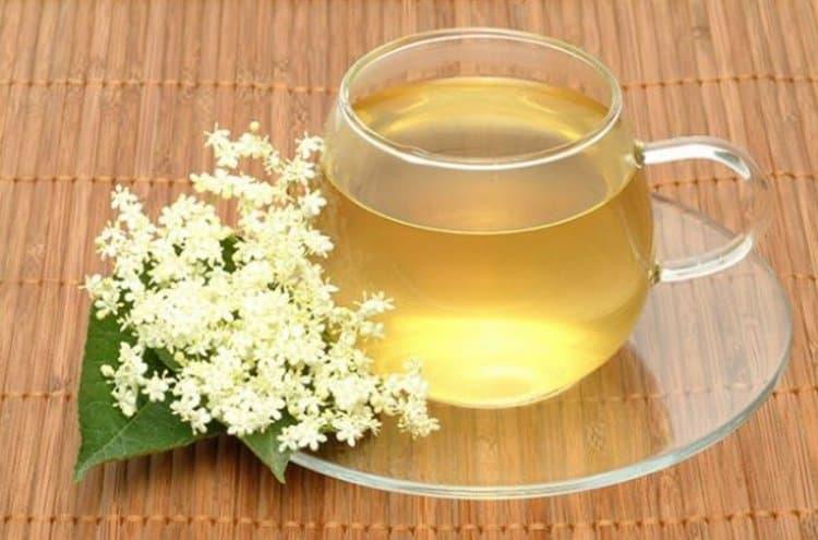 При лечении пиелонефрита у женщин в домашних условиях можно применять отвар листьев бузины.