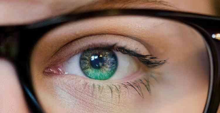 Сморчок поможет улучшить зрение