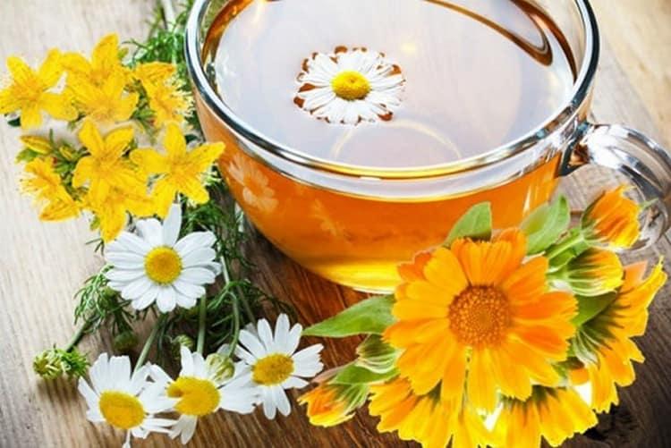 Лечение аллергии на солнце можно проводить лекарственными травами.