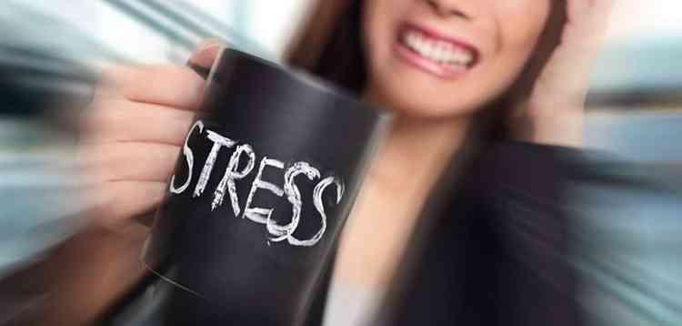 Астильба поможет справиться со стрессом