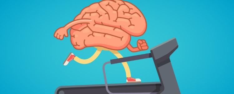 Огурец поможет работе мозга
