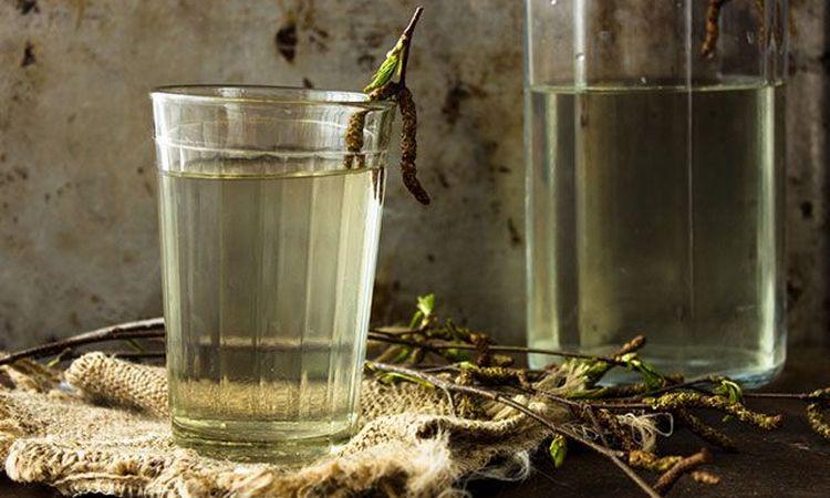 При пиелонефрите важно употреблять побольше жидкости, в частности полезными будут березовый сок, морсы.