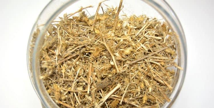 Сушеное сырье используется для приготовления настойки.