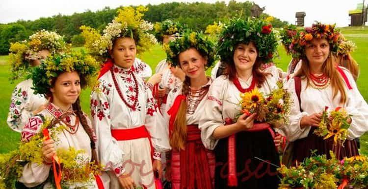 Любисток: лечебные свойства и применение