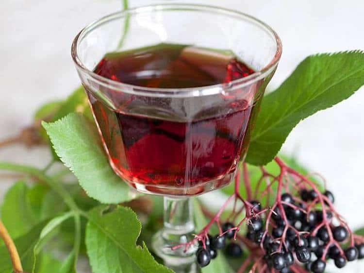 Лечебные свойства черной бузины позволяют использовать ягоды дляприготовления настоев, которые, впрочем, имеют и некоторые противопоказания.
