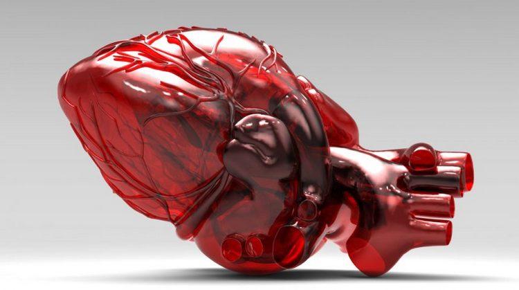 Положительно влияет употребление джекфрута на работу сердечно-сосудистой системы.
