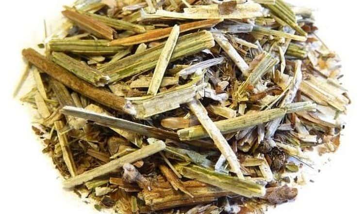 В домашних условиях легко можно высушить траву цикория.