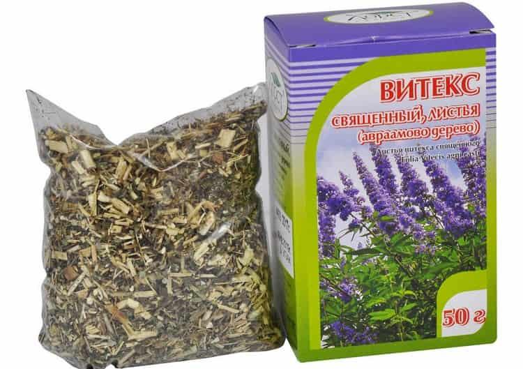 Экстракт витекса священного обладает полезными свойствами для женщин и помогает лечить многие специфические заболевания вплоть до бесплодия.