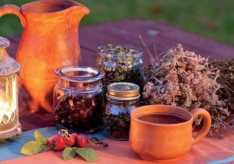 Целебные свойства иван-чая используются даже при лечении онкологии.
