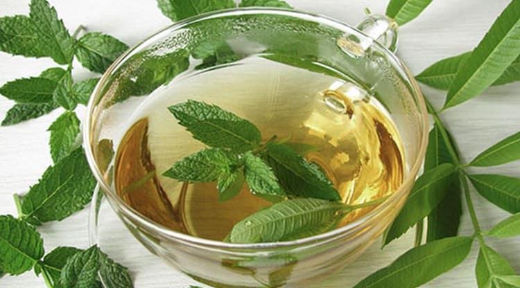 Если говорить про успокоительные средства растительного происхождения, первым приходит на ум чай из мяты.
