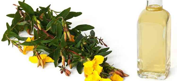 Применение масла из первоцвета