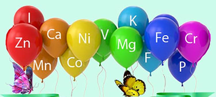 Подорожник витамины и микроэлементы