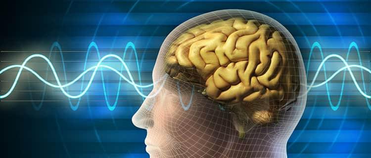 Маниок улучшит работу вашего мозга