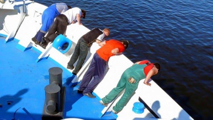 При морской болезни использовали настойки мандрагоры.