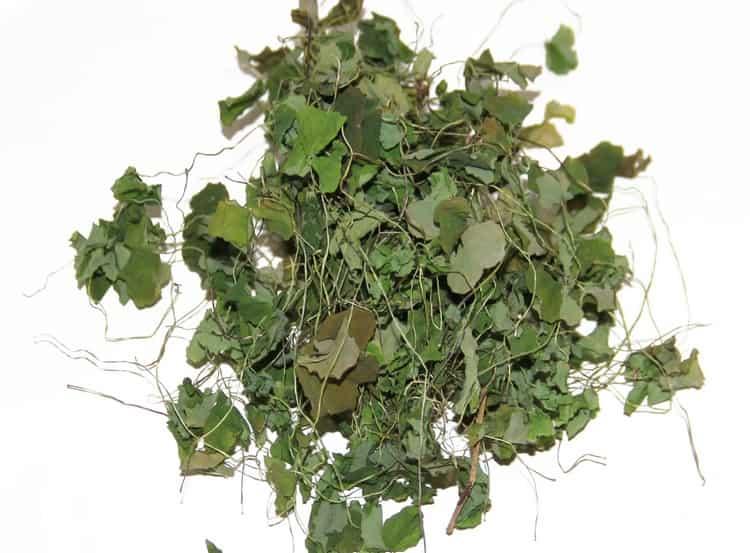 А так выглядит это растение в сушеном виде.