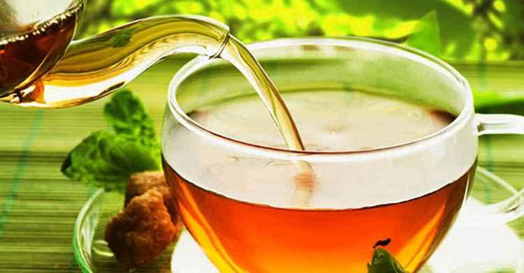 Польза настоев и чаев из периллы