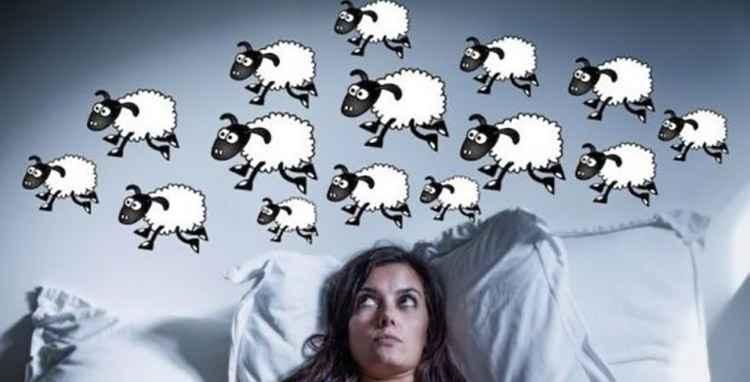 Вьюнок полевой поможет вам уснуть